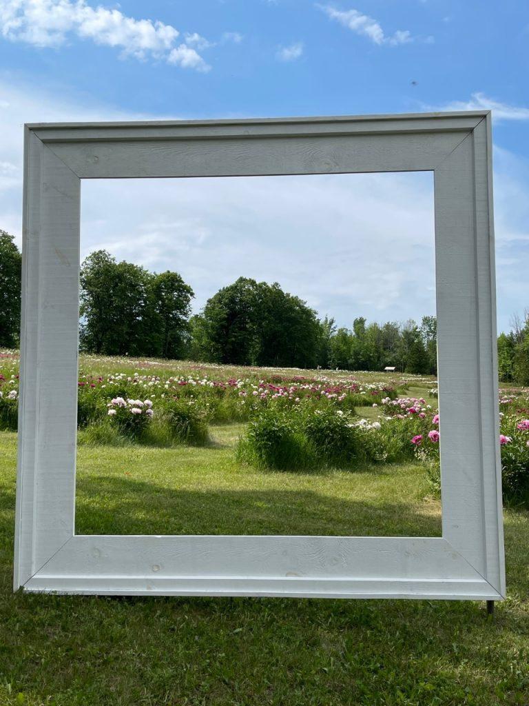 Frame over garden